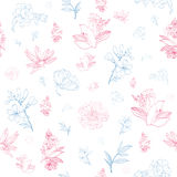 Vector Pastel Pink Blue Japanese Asian Floral Royalty Free Stock Images