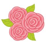 Vector Pastel Roses. Roses vector illustration Royalty Free Stock Photo