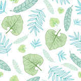Vector pastel tropical drawing summer hawaiian seamless pattern with tropical green   Stock Image