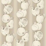 Vector patroon van uitstekend fruit Royalty-vrije Stock Foto