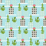 Vector pattern with cactus Stock Photos
