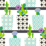 Vector pattern with cactus Stock Image