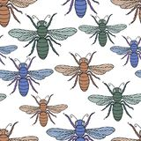 Vector pattern from cartoon flies Royalty Free Stock Image