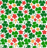 Vector pattern with clovers, trefoils. St. Patrick`s day texture. Decorative floral background with flowers. Stock Images