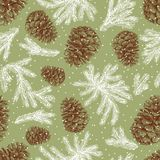 Background of fir cones and fir branches. Vector pattern of the cones and branches of a christmas tree Royalty Free Stock Photo