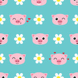 Vector pattern with cute piglets Royalty Free Stock Photo
