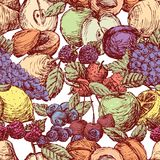 Seamless background of the various drawn fruit Stock Images