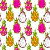 Vector pattern, dragon fruit. Royalty Free Stock Photo