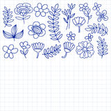 Vector pattern with flowers Garden Birhday Wedding Postcard Royalty Free Stock Images