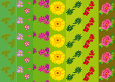 Vector pattern with flowers and plants. Floral decor. Original floral seamless. Royalty Free Stock Image