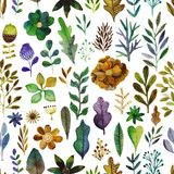 Vector pattern with flowers and plants. Floral decor. Original floral seamless background. Bright colors watercolor Royalty Free Illustration