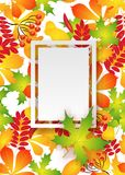 Vector pattern frame with autumn leaves Stock Photos