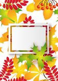 Vector, pattern, frame with autumn leaves Stock Photo