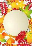 Vector, pattern, frame with autumn leaves Stock Photos