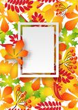 Vector, pattern, frame with autumn leaves Stock Image