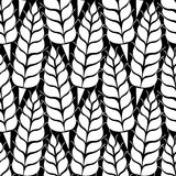 Vector pattern with grains and wheat Stock Photos
