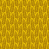Vector pattern with grains and wheat Stock Images