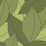 Vector Pattern of Green Leaves Royalty Free Stock Photo