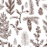 Vector pattern with Christmas plants . Royalty Free Stock Image