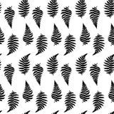 Vector pattern illustration of fern leaf. Vector botanical illustration of fern leaf. Isolated outline modern drawing of tropical plant. Set of exotic fern Royalty Free Stock Photos