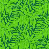 Vector pattern with leaves of tropical plants. Seamless floral vector pattern inspired by leaves of tropical plants and nature, mostly ferns and palm trees in vector illustration