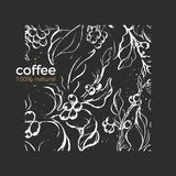 Vector pattern. Natural product Coffee branch, tree, leaves, bean. Grain Sketch style on black background. Vintage template Aroma tropical drink Organic plants vector illustration