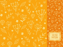 Flower pattern with decorative flowers, leaves and field plants. Vector pattern for packaging, advertising, print and websites as a background Royalty Free Illustration