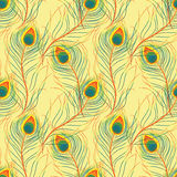 Pattern with peacock feathers Stock Photo