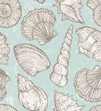 Vector pattern with sea shells Royalty Free Stock Image