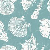 Vector pattern with sea shells Stock Images