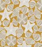 Vector pattern with shells starfishes and urchins Royalty Free Stock Photography