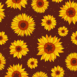 Vector pattern of sunflowers Stock Photo