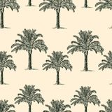 Seamless background of the palm trees Royalty Free Stock Photography