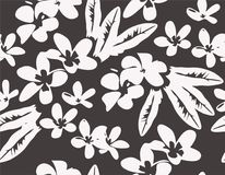 Vector pattern with tropical plumeria flowers Stock Photography