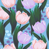 Vector pattern with tulips Royalty Free Stock Image