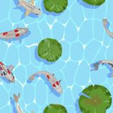 Seamless pattern with image of Koi fish and lotus leaves on water. Vector illustration. Vector Pattern of water and fish carp Koi among round leaf water lilies Royalty Free Stock Photos