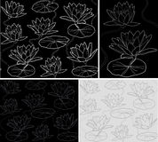 Vector Pattern Waterlily Royalty Free Stock Photography