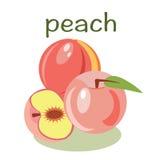 Vector peach   fruit  illustration Stock Photo