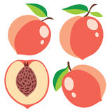 Vector peaches collection Stock Photos