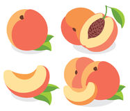 Vector peaches Stock Photos
