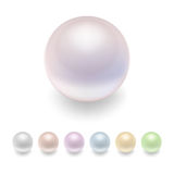 Vector pearls set. Stock Photography