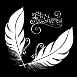 Vector Peerless Decorative Feather Royalty Free Stock Photos