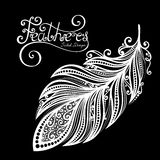 Vector Peerless Decorative Feather Stock Images