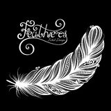 Vector Peerless Decorative Feather Stock Photos