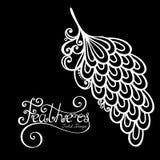 Vector Peerless Decorative Feather Stock Photography
