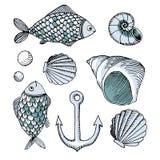 Vector peixes e shell e âncora tirados mão Foto de Stock Royalty Free