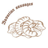Vector pencil hand drawn illustration of bavarian sausages on salad leaves with label Stock Photos