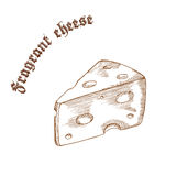 Vector pencil hand drawn illustration of cheese piece with label Royalty Free Stock Images