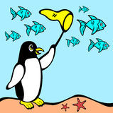 Vector of Penguin chasing fish Royalty Free Stock Image