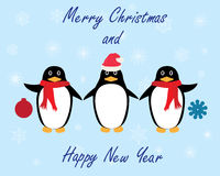 Vector penguins winter Stock Images